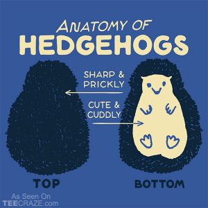 Anatomy Of Hedgehogs T-Shirt