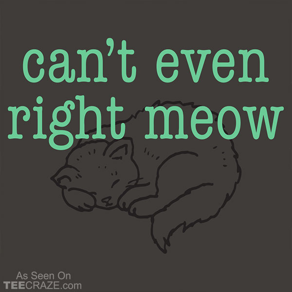 Can't Even Right Meow T-Shirt