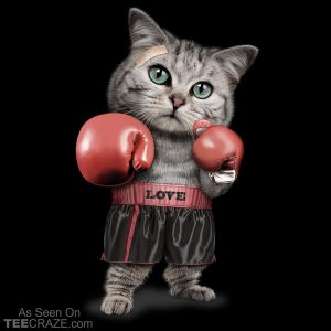 Cat Boxing T-Shirt