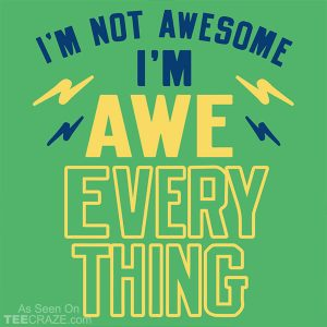 I'm Not Awesome I'm Awe Everything T-Shirt