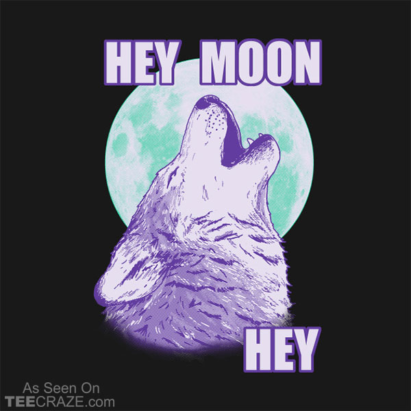 Hey Moon Hey T-Shirt