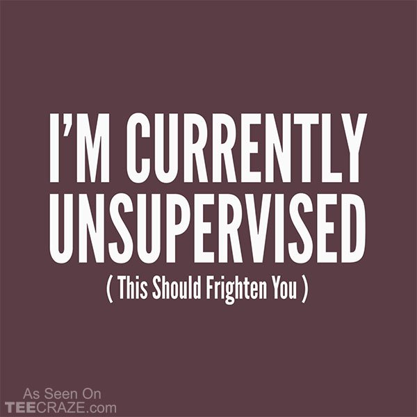 I'm Currently Unsupervised T-Shirt
