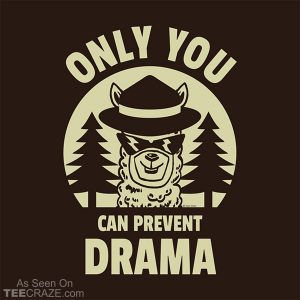 Only You Can Prevent Drama T-Shirt