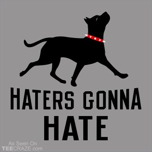 Haters Gonna Hate Pit T-Shirt