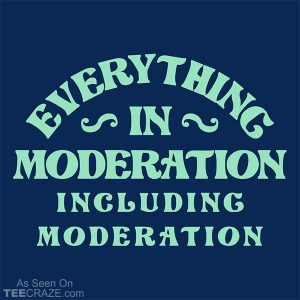 Everything In Moderation Including Moderation T-Shirt