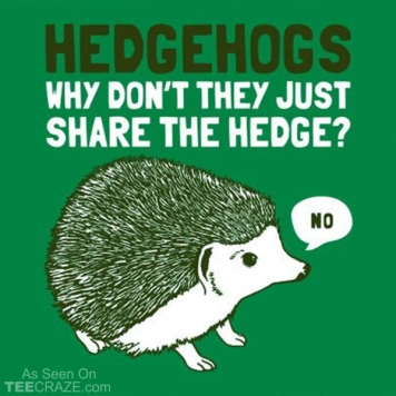 Hedgehogs Can't Share T-Shirt