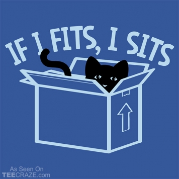 If It Fits I Sits T-Shirt