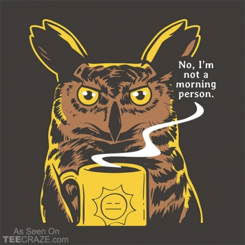 No I'm Not A Morning Person T-Shirt